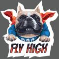 DOG FLY